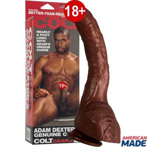 Calexotics Colt Adam Dexter's 8,5'' 22 cm Realistik Penis